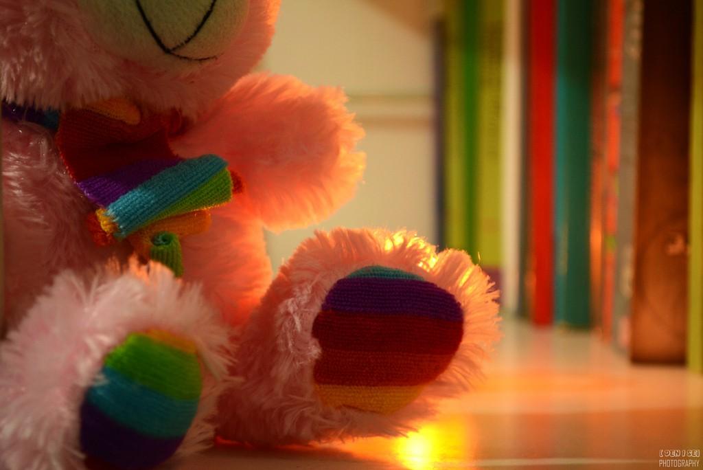 ours en peluche coloré