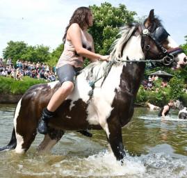 sport équitation aquatique