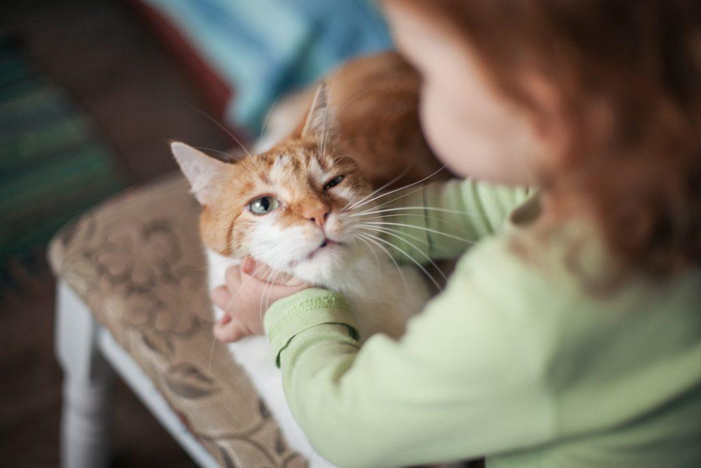 rencontres chat avec des inconnus