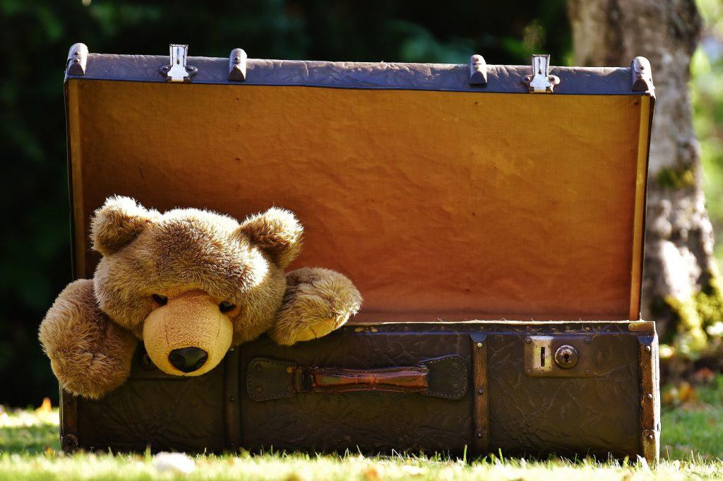 Peluche dans une valise